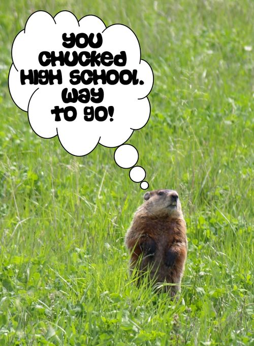 Woodchuckwishes