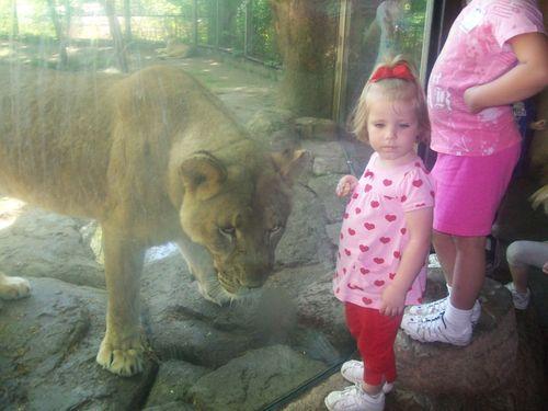 Zoofieldtrip 032