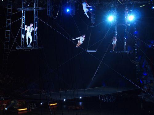 Circus 394