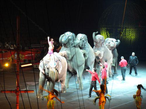 Circus 463