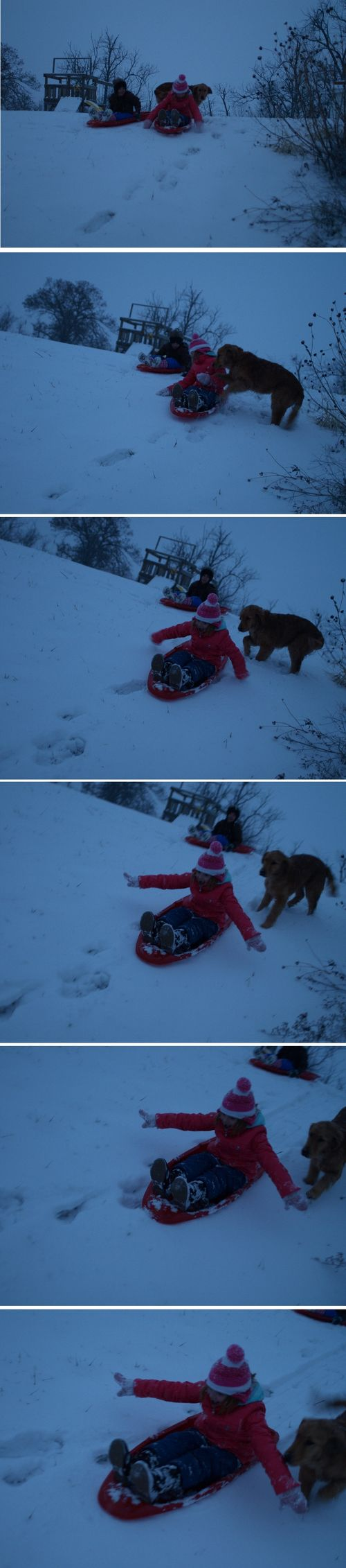 Sledsequence