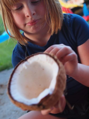 Coconut 099