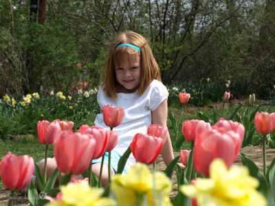 Tulips_099copyr